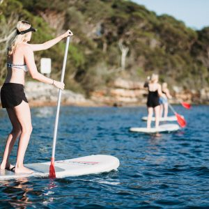 Things to do in Manly - SUP Lesson