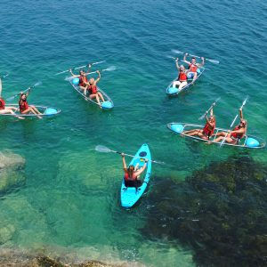 Manly Sailing - Things to do in Manly