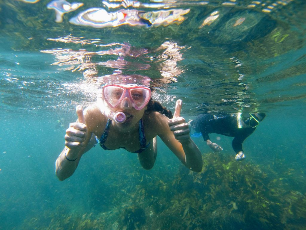 Things to do in Manly - Snorkel with EcoTreasures