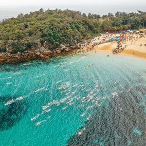 Shelly Beach Cole Classic Manly - Swim