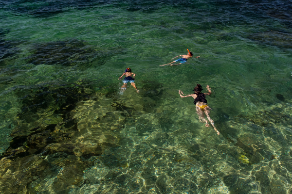 Snorkelling at Fairy Bower, Manly