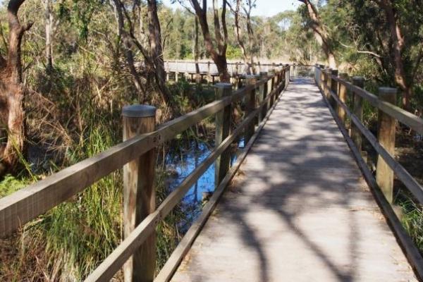 Warriewood Wetlands, Northern Beaches